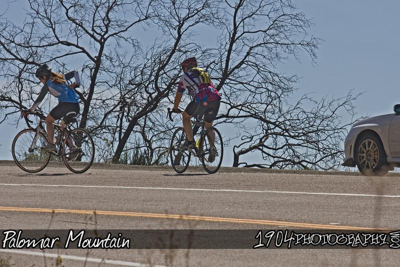 20090321 Palomar 220.jpg