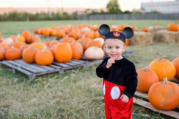 Jenkins - Halloween Mini 10.2017