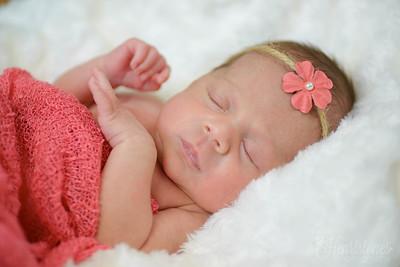 Elise - Newborn