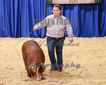 Livestock Show Arena