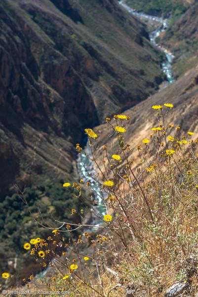 06.02_Colca Canyon-6221.jpg