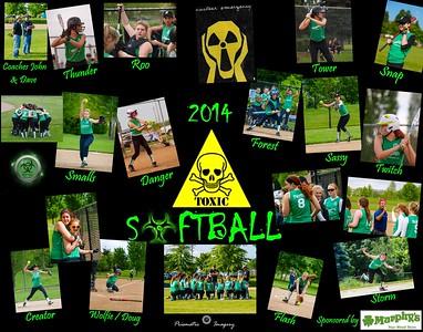 2014 Team Toxic