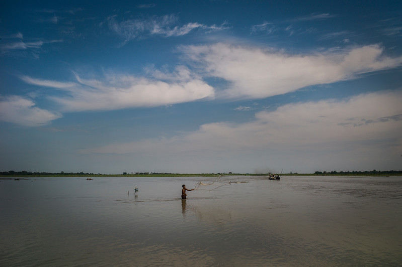 Dhemanji, Assam, India August,2014:   A man fishes in the flood water near Narayanpur village.   Series on early marriages in Assam, India for Al Jazeera America.       Photo:  Sami Siva