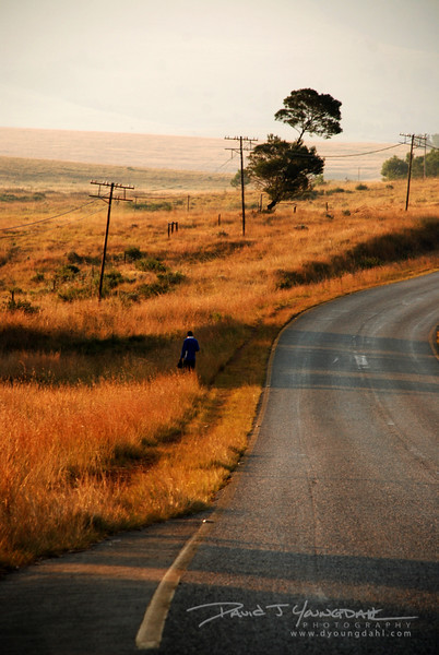 2008 Swaziland Landscapes