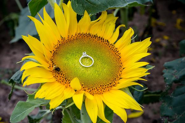 Paul and Julie - Surprise Proposal
