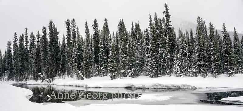 winterwonderland-2.jpg