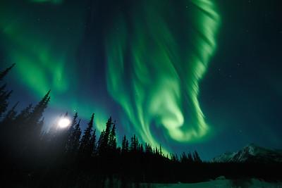 Aurora Borealis Alaska - March 2014