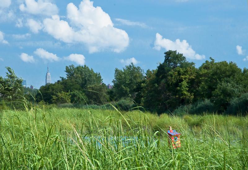 August 11_Mill Creek Marsh_0602.jpg