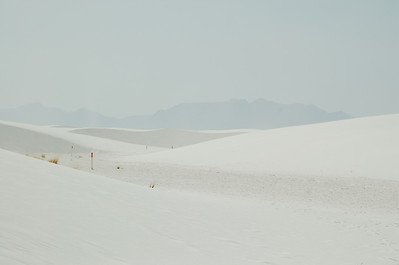 White Sands NM 2008