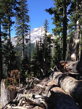 Elk Meadows Hike