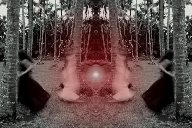 lidow_20172272344836.jpg