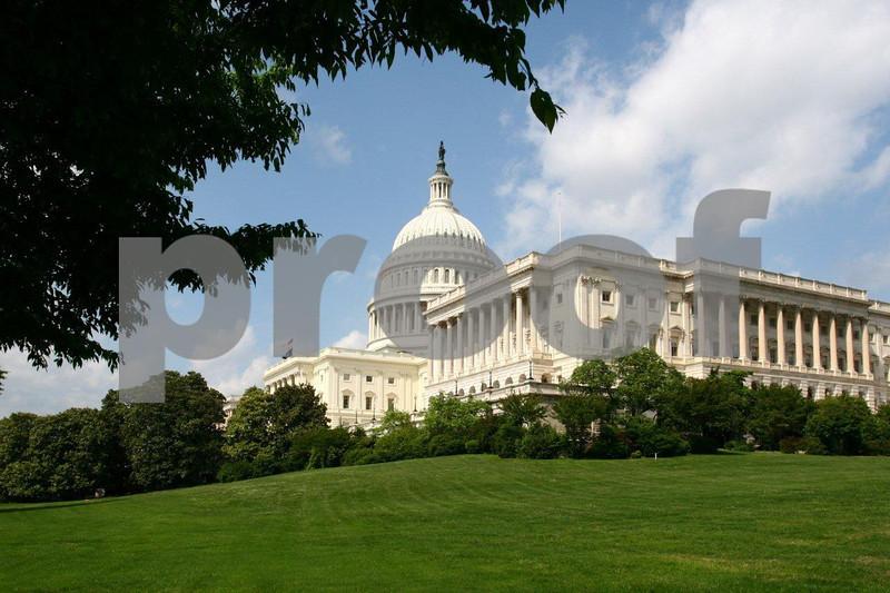 Capitol, lawn 1118.jpg