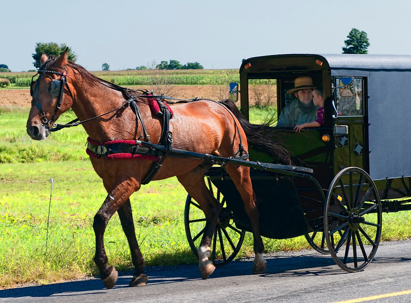 Amish Country-9.jpg