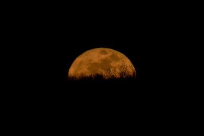 Super Perigee Moon 3/19/11