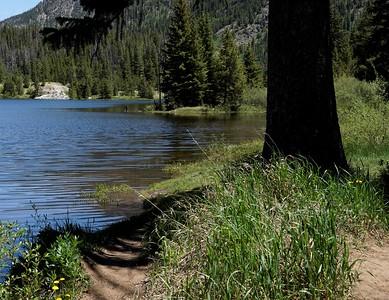 Natures Way-Stops. . : .