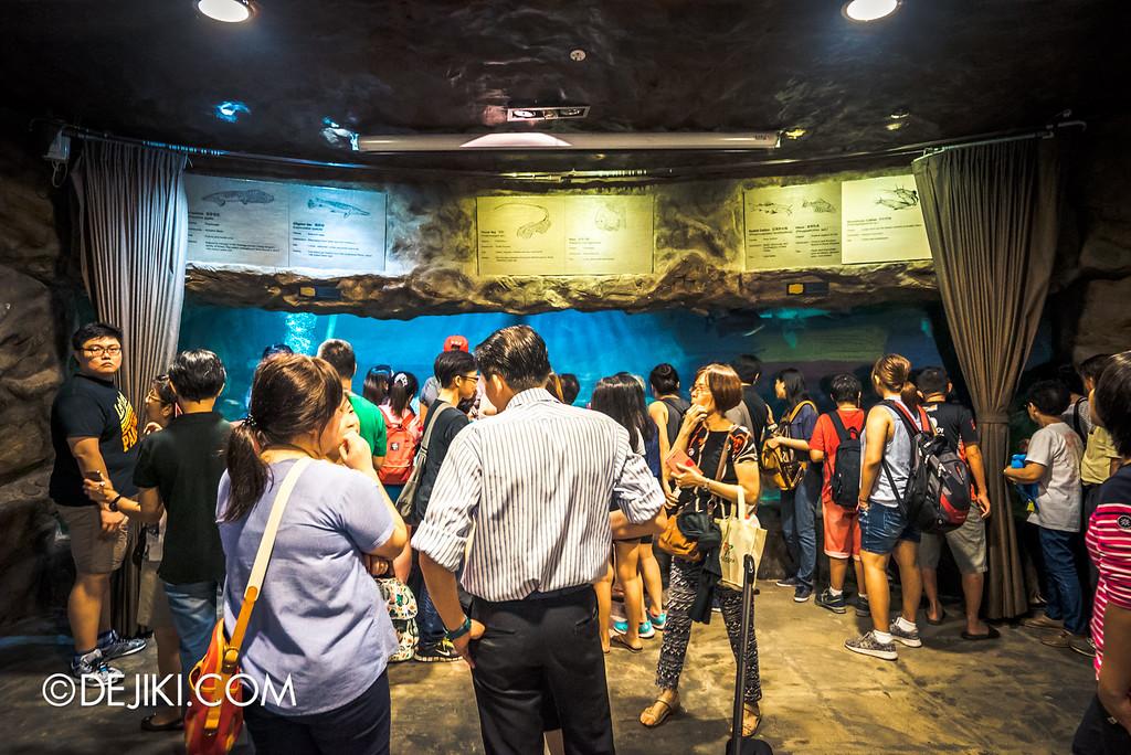 Underwater World Singapore - Inside living fossils