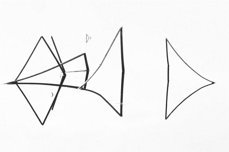 Cat fish tails #11 8918.jpg