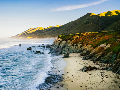 Monterey Landscapes