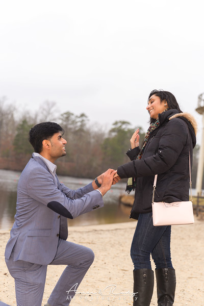 Puneet's Lake Proposal - New Jersey
