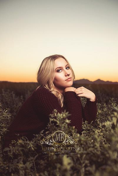 MelindaBartnikPhotography_Hanna_senior_2017_55l copy.jpg