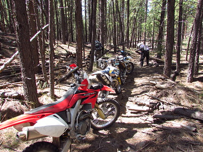 Jemez Mtns. - Holiday Mesa-Stable Mesa ST Ride  8-28-17
