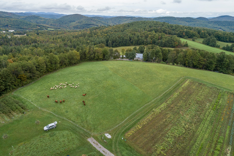 farm day fall 2018-160.jpg