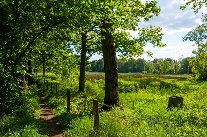 GrensPark Kempen~Broek, omgeving Stramprooierbroek & St.-Maartensheide 70.jpg