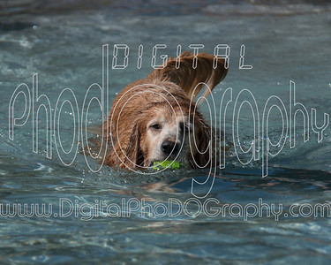 10/5/2013 Dawg Waterpark