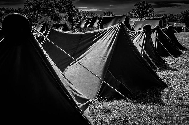 © Wayne Heim