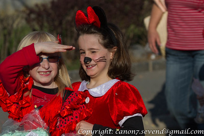 Bussignycarnaval2012_divers
