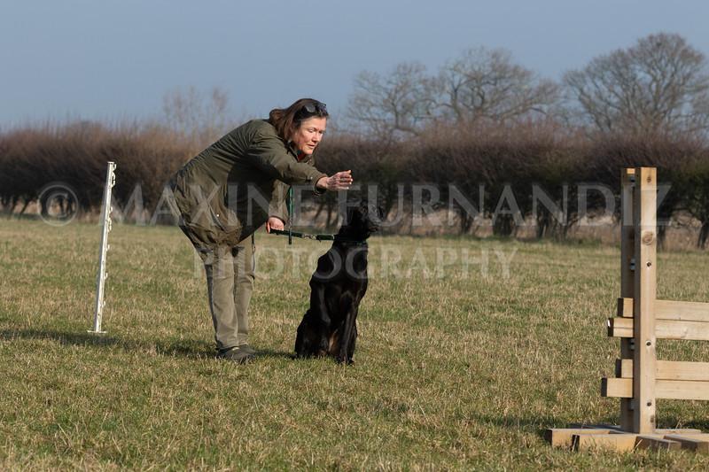 Dog Training Novice GD Feb2019-5975.jpg