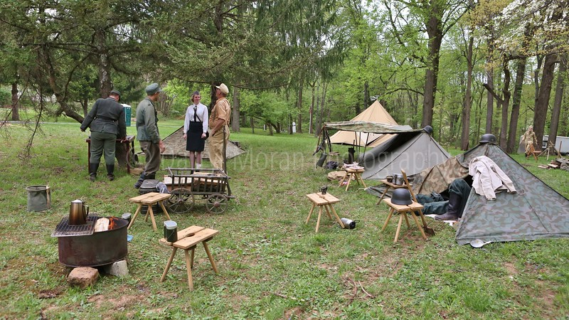 MOH Grove WWII Re-enactment May 2018 (1123).JPG