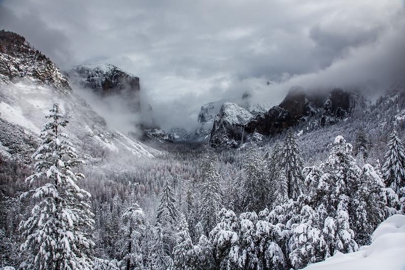 Family_012117_Yosemite_6082.jpg