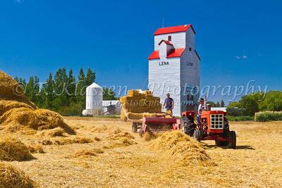 Charlie Baldock Farm