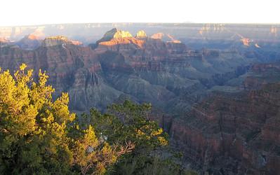 2010 05 ~ Utah Tour 5 ~ Grand Canyon North Rim