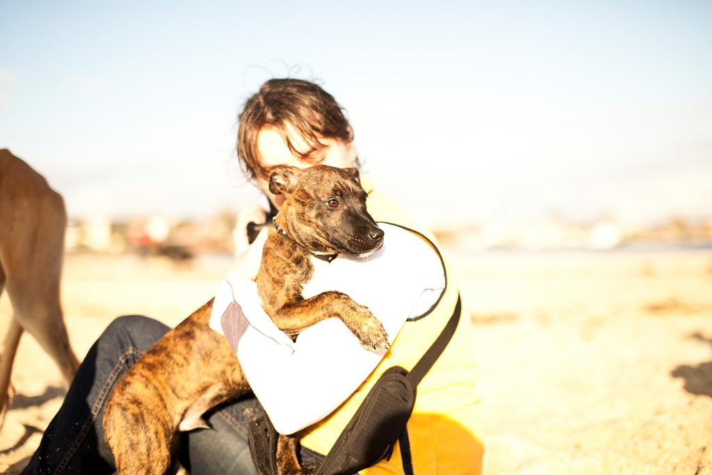 Dogsonbeach-AlexanderGardner-0018-20100614