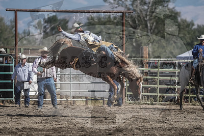 Baker Co Fair and Panhandle Rodeo 2019 (Halfway, OR)