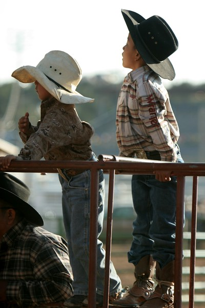 Rodeo  1169.jpg