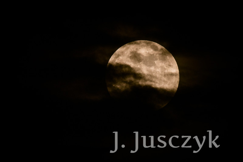 Jusczyk2021-9984.jpg
