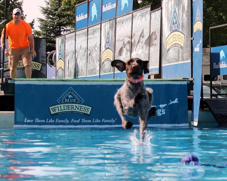 2015.8.6 Winnebago County Fair Dock Dogs (115).JPG