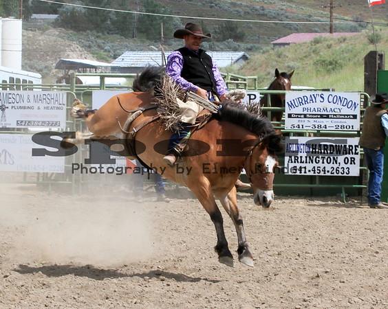 2014 Arlington Jackpot Rodeo