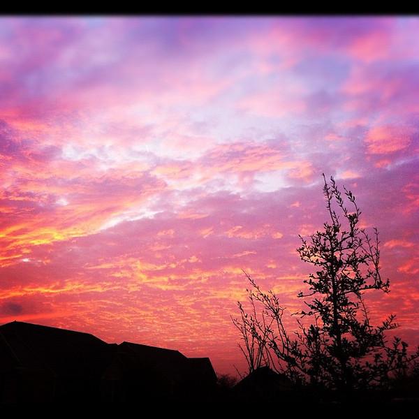 2012-03-01_1330574342.jpg