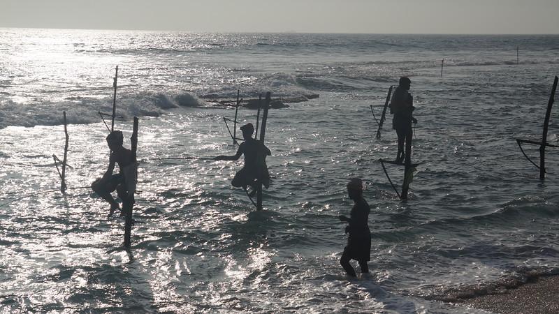 Stilt Fishermen, Dalawela, Sri Lanka