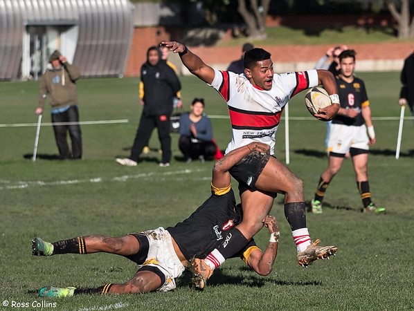 Scots College vs. Wellington College 2018