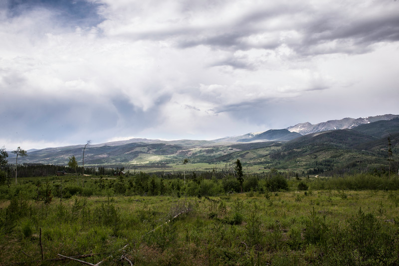 A meadow view in the Arapaho Forest