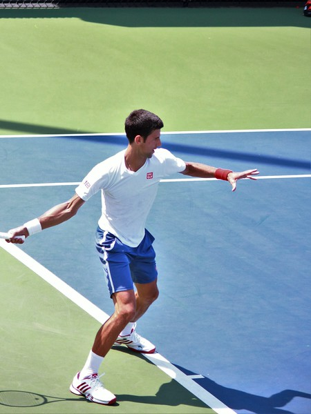 Novak Djokovic (1)