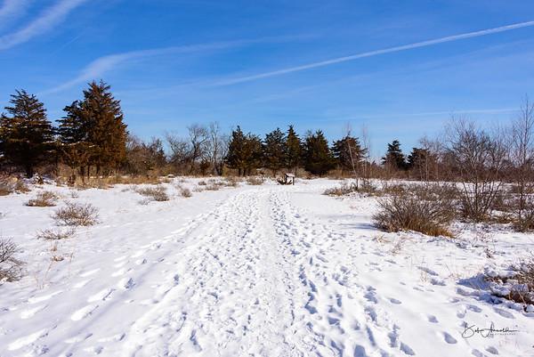 Ninigret NWR - Grassy Pond Trail