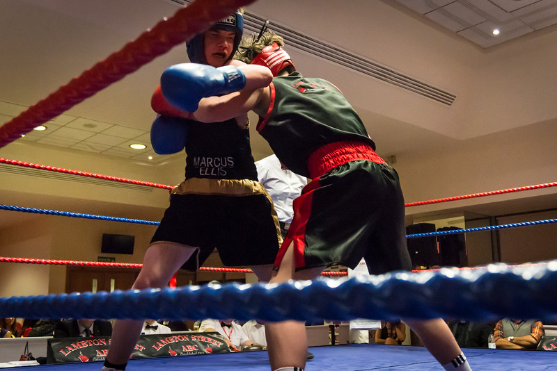 -Boxing Event March 5 2016Boxing Event March 5 2016-17840784.jpg