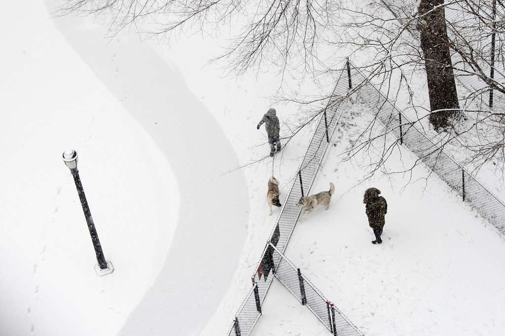 . People take their dogs to a dog run in the snow, Saturday, Jan. 7, 2017, in New York. (AP Photo/Mary Altaffer)