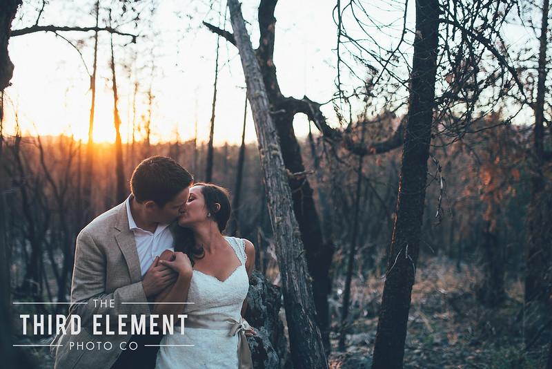 Third Element Photo Co Brittney + Errol Yosemite Wedding Hetch Hetchy San Francisco_0020.jpg